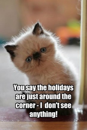 You say the holidays are just around the corner - I  don't see anything!