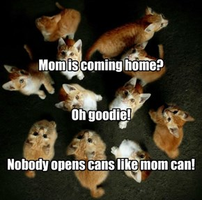 Mom is coming home?   Oh goodie!   Nobody opens cans like mom can!