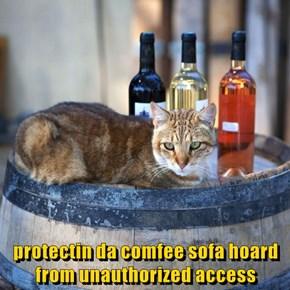 protectin da comfee sofa hoard from unauthorized access