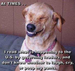 At TIMES . .  I read what is happening to the U.S. by governing leaders, and don't know whether to laugh, cry, or poop my pants.