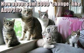 How about sum GOOD *change* like ADOPT!!?