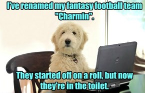 Fantasy Football Manager's Lament