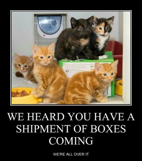 WE HEARD YOU HAVE A SHIPMENT OF BOXES COMING