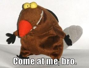Come at me, bro.