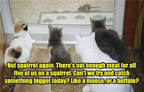 Not squirrel again. There's not enough meat for all five of us on a squirrel. Can't we try and catch something bigger today? Like a moose, or a buffalo?