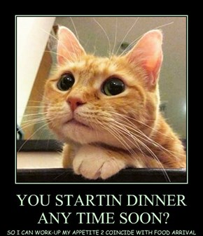 YOU STARTIN DINNER  ANY TIME SOON?