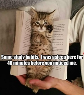 Go ahead and turn the page, I could use another nap.