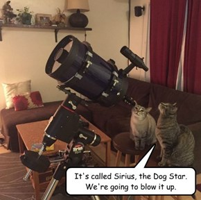 It's called Sirius, the Dog Star. We're going to blow it up.