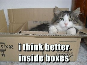 i think better                             inside boxes