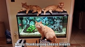 Happy Thanksgiving cheese friends