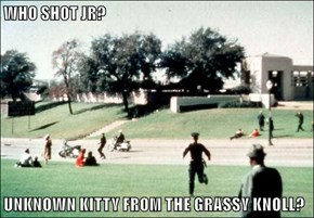 WHO SHOT JR?  UNKNOWN KITTY FROM THE GRASSY KNOLL?