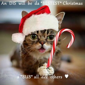 An  DIS  will  be  da *BESTEST* Christmas  a *BUB* all  dee  others  ♥
