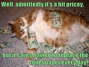 Well, admittedly it's a bit pricey,  but it saves having to replace the toilet paper every day!