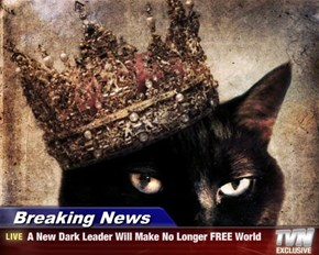 Breaking News - A New Dark Leader Will Make No Longer FREE World