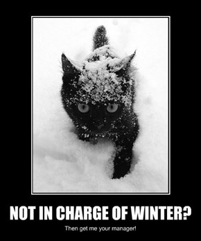 NOT IN CHARGE OF WINTER?
