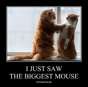 I JUST SAW THE BIGGEST MOUSE