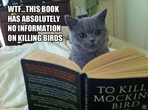 To Kill a Mocking Bird... or is it???