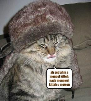 ah sed ahm a mongol kitteh, nada mongwel kitteh u mowon
