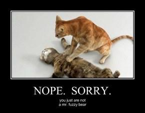 NOPE.  SORRY.