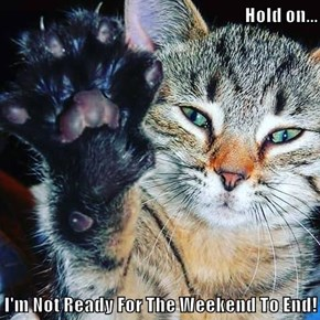 Hold on...  I'm Not Ready For The Weekend To End!