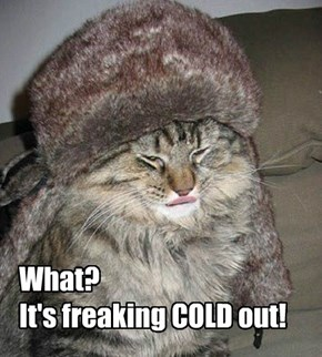 What? It's freaking COLD out!