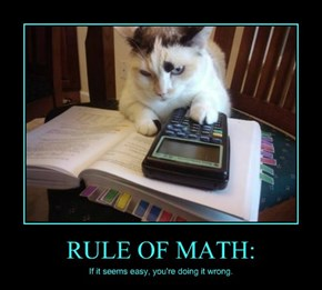 RULE OF MATH: