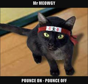 Mr MEOWGY  POUNCE ON - POUNCE OFF