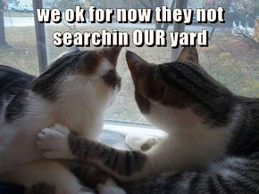 we ok for now they not searchin OUR yard