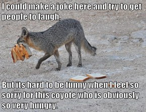 I could make a joke here and try to get people to laugh,  But its hard to be funny when I feel so sorry for this coyote who is obviously so very hungry.