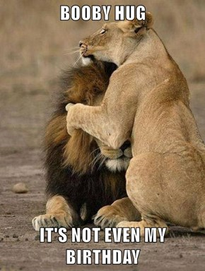 BOOBY HUG  IT'S NOT EVEN MY BIRTHDAY