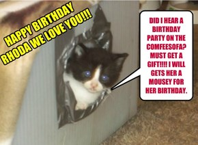 DID I HEAR A BIRTHDAY PARTY ON THE COMFEESOFA?  MUST GET A GIFT!!!! I WILL GETS HER A MOUSEY FOR HER BIRTHDAY.