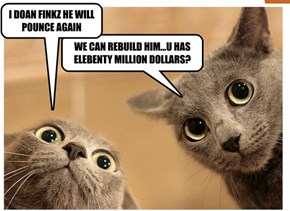 Elebenty Million Dollar Cat