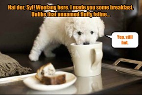 Hai der, Syl! Woofany here. I made you some breakfast. Unlike that unnamed fluffy feline...