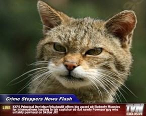 Crime Stoppers News Flash - KKPS Principal Dontebanfinkaboutit offers big award ob Elebenty Munnies for informashuns leeding to teh captshur ob dat nawty Pownser guy who unfairly pownsed on Skolar JR!