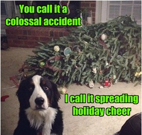 You call it a colossal accident