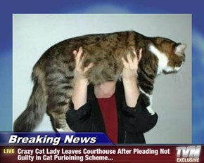 Breaking News - Crazy Cat Lady Leaves Courthouse After Pleading Not Guilty in Cat Purloining Scheme...