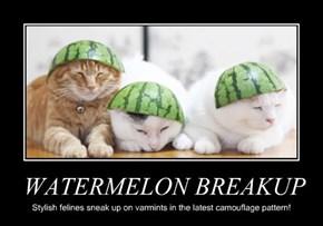 WATERMELON BREAKUP