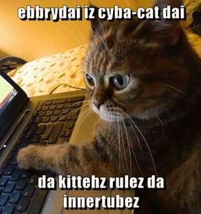 ebbrydai iz cyba-cat dai  da kittehz rulez da innertubez