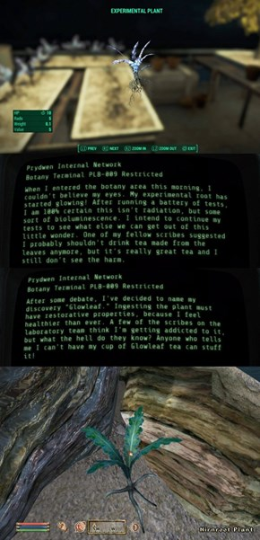 Do Fallout and the Elder Scrolls Take Place in the Same Universe?