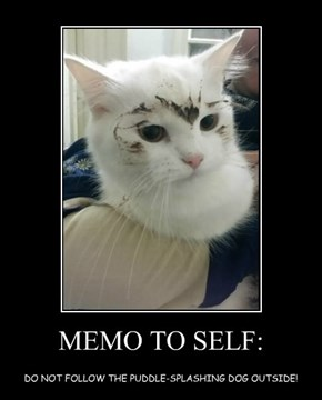 MEMO TO SELF: