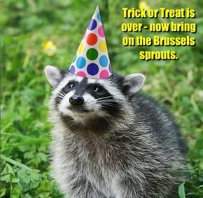 Vegetarian Raccoon