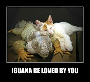 IGUANA BE LOVED BY YOU