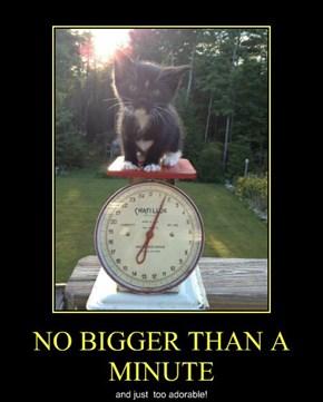 NO BIGGER THAN A MINUTE