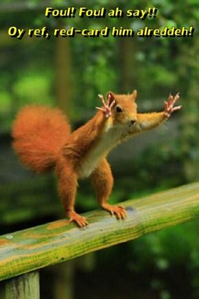Foul! Foul ah say!!                           Oy ref, red-card him alreddeh!
