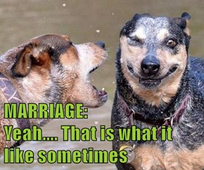 MARRIAGE:                              Yeah.... That is what it like sometimes