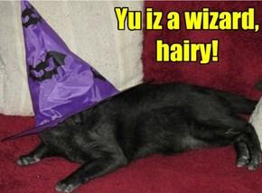 Yu iz a wizard, hairy!