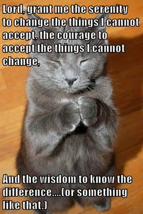 Lord, grant me the serenity   to change the things I cannot accept, the courage to accept the things I cannot change,   And the wisdom to know the difference....(or something like that.)