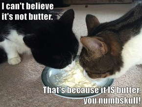 I can't believe                                                                                       it's not butter.  That's because it IS butter,                                                                   you numbskull!
