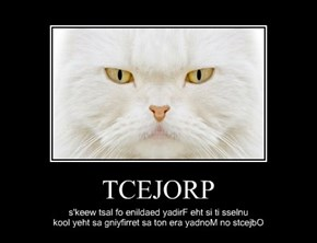 TCEJORP
