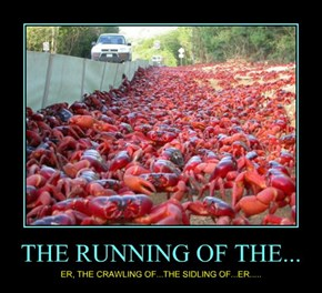 THE RUNNING OF THE...